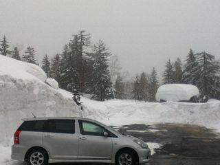 4月の旭岳